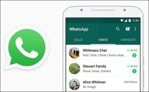 Как создать клиентский чат в Whatsapp
